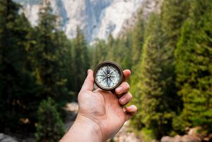 compass in a man's hand in front of a green forest